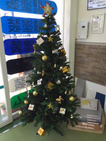 新潟市クリスマスツリー